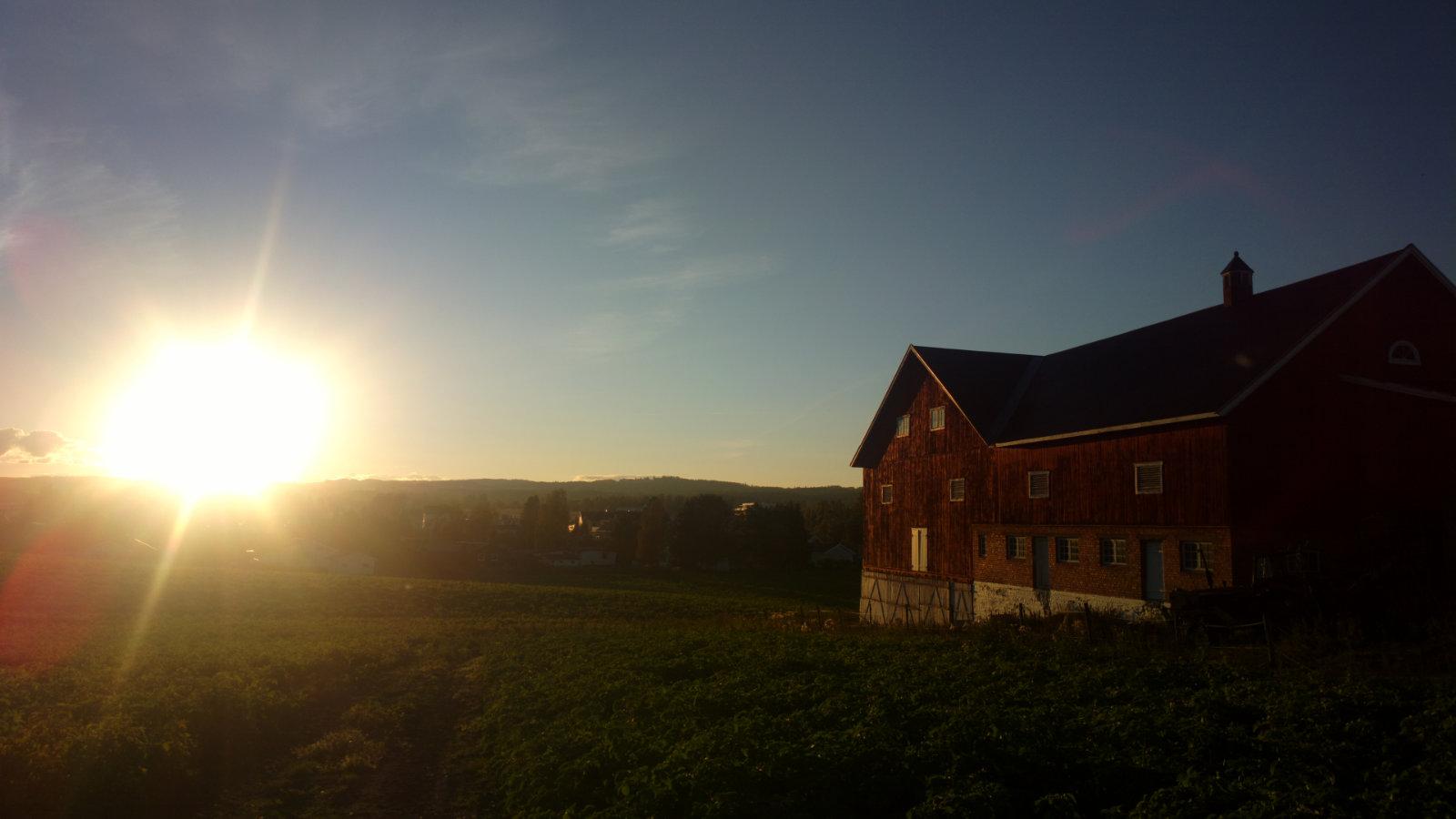 Norwegia (134)