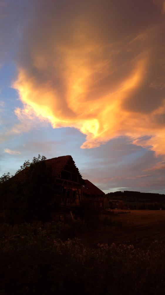 Norwegia (207)