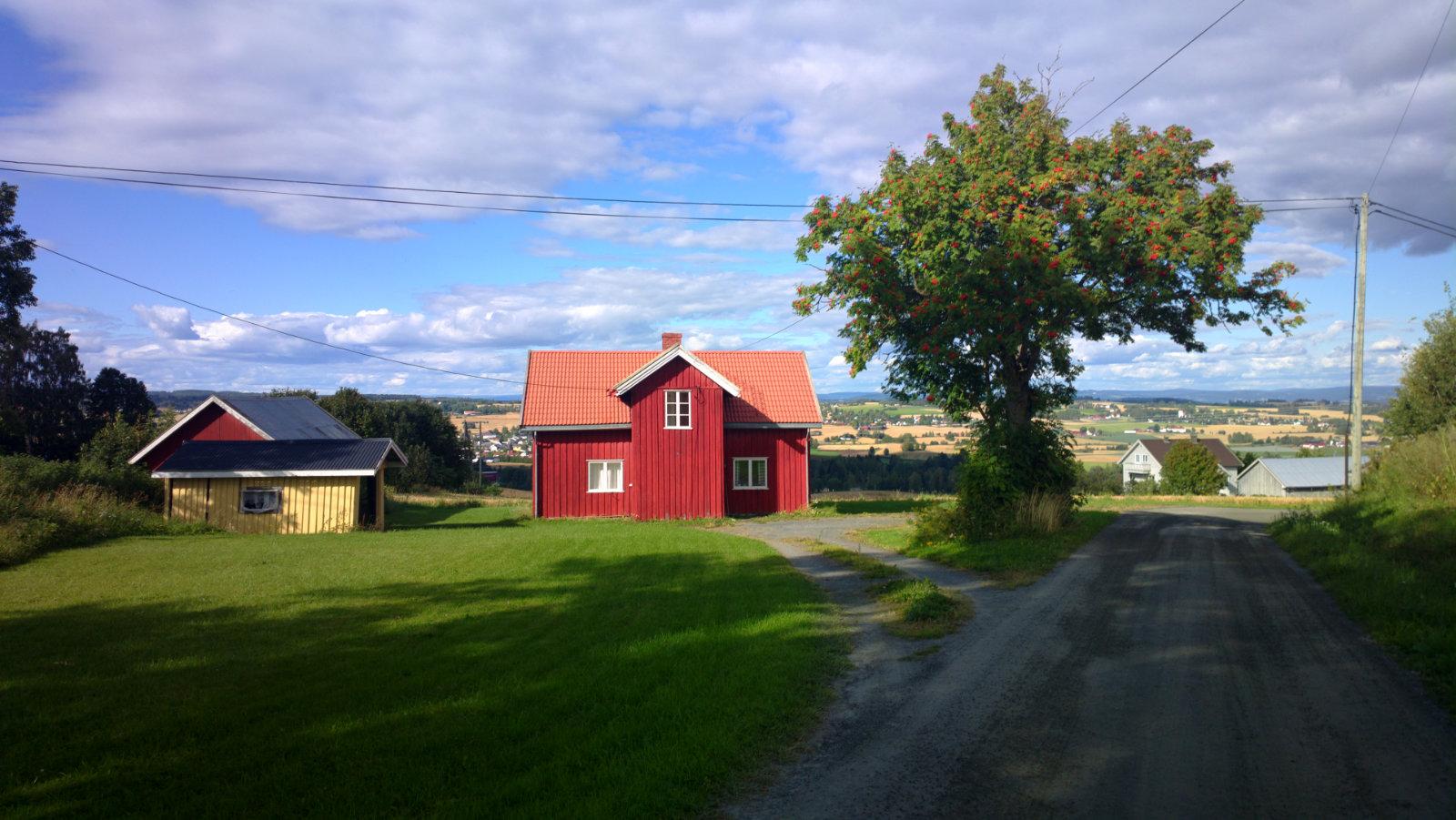 Norwegia (36)