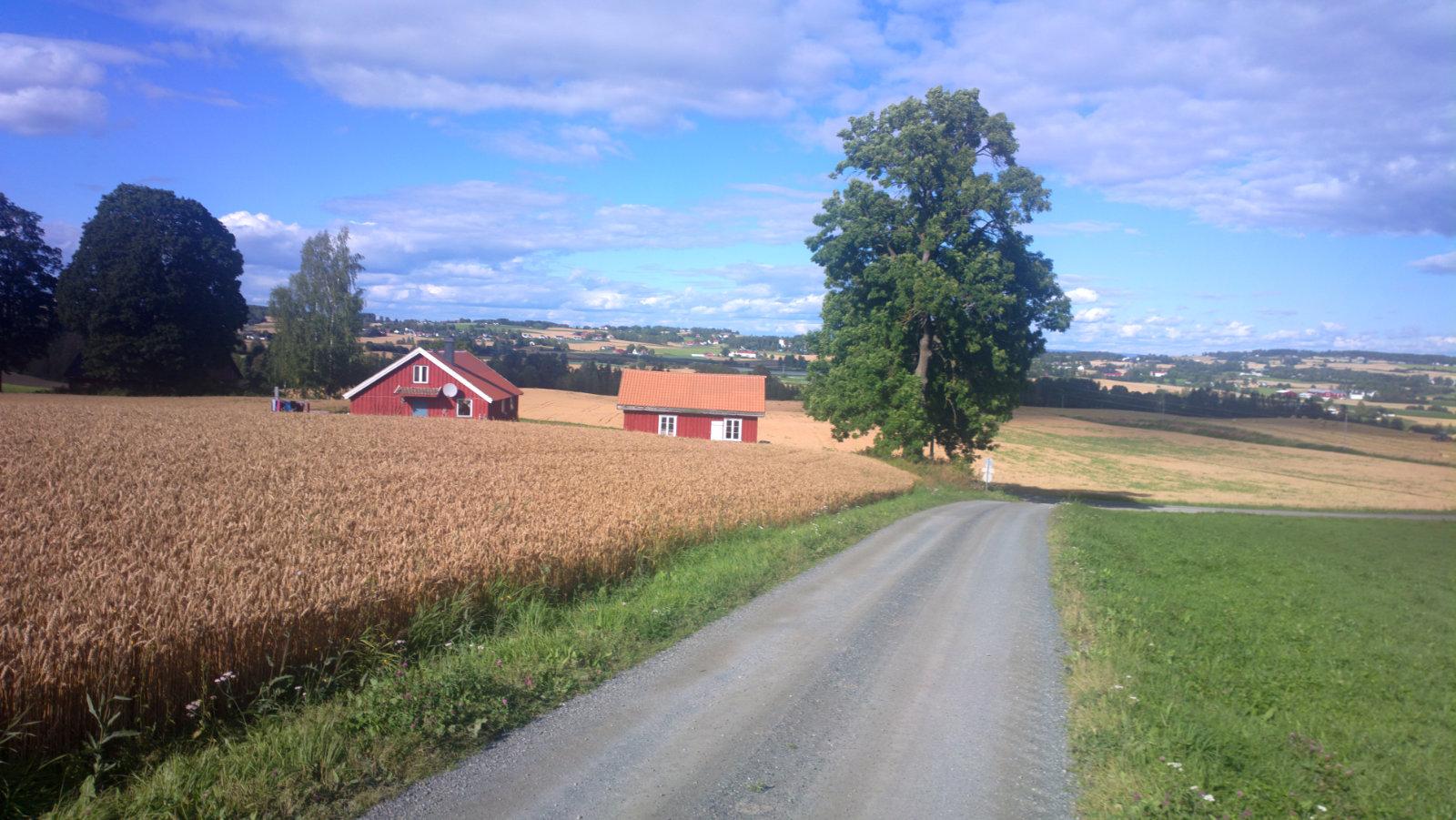 Norwegia (39)