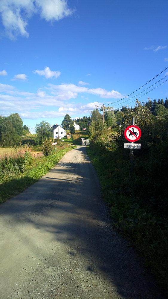 Norwegia (46)