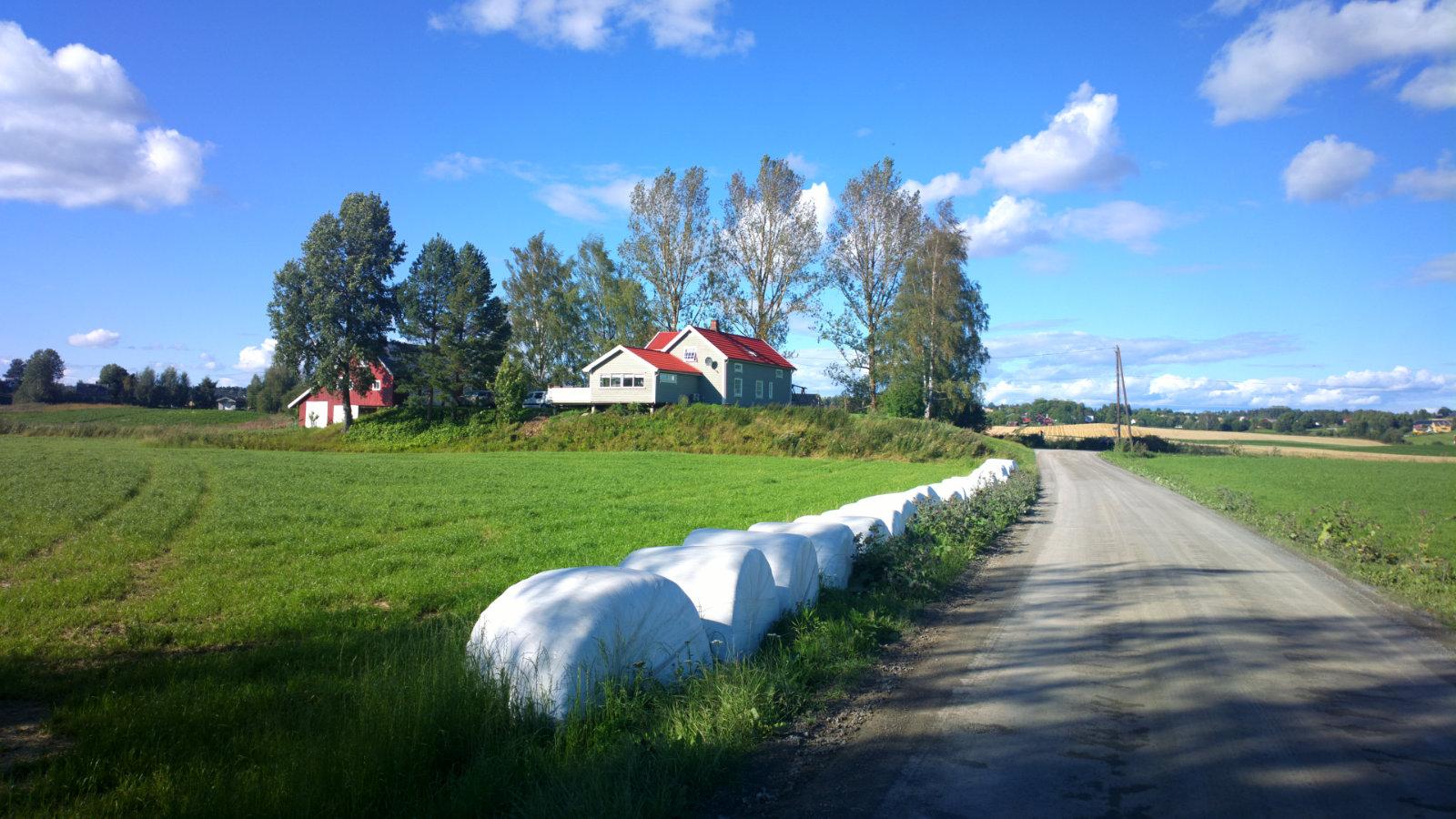 Norwegia (48)