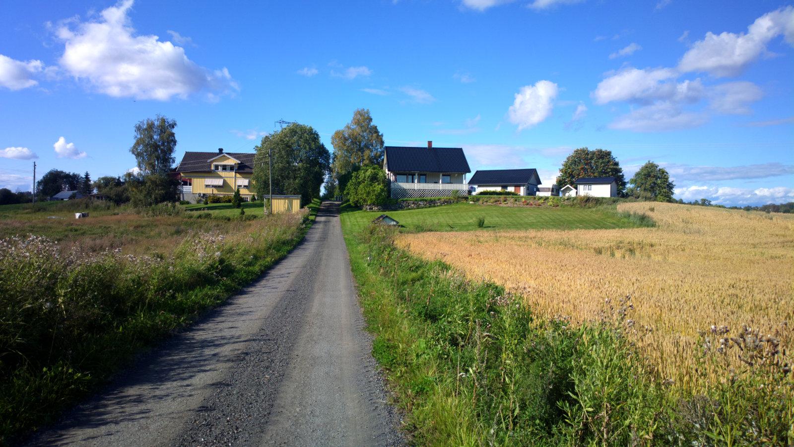 Norwegia (50)