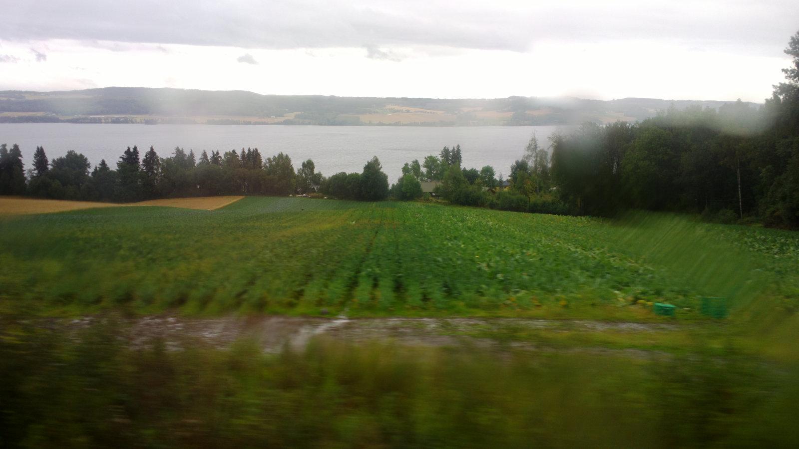 Norwegia (70)