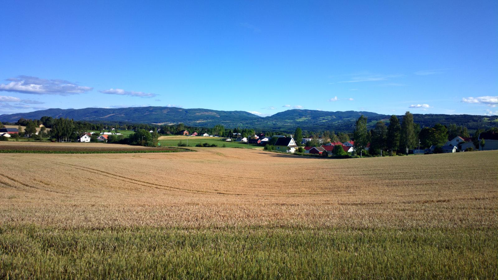 Norwegia (95)