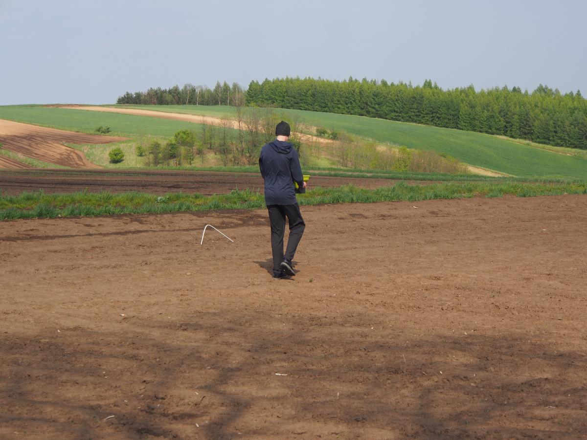 Zakładanie trawnika - wysiew